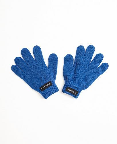 Koningsblauwe handschoen